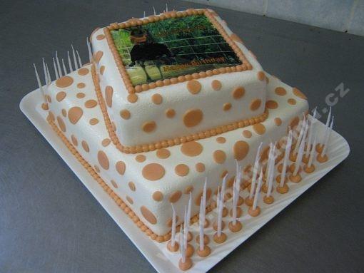 dort-dvoupatrovy-ctvetce-marcipan-foto.jpg