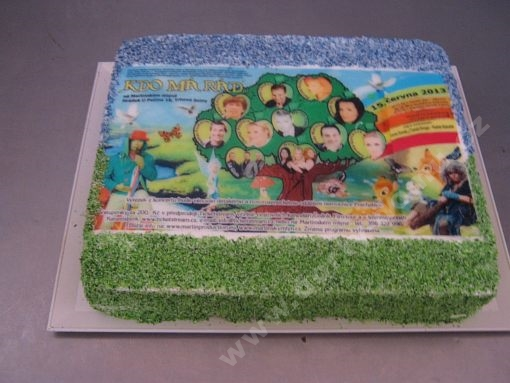 dort-obdelnik-pozvanka-jedla-fotografie.jpg