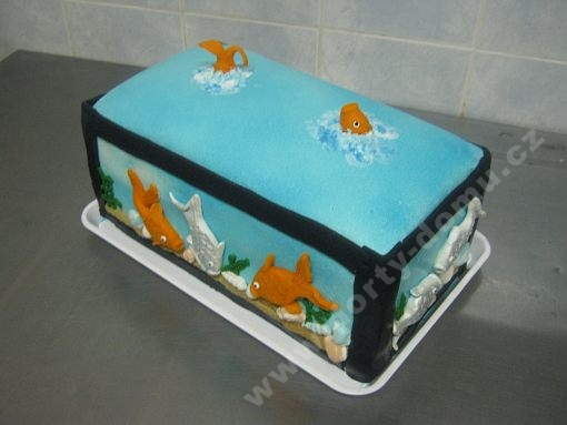 dort-plasticke-akvarium-rybicky.jpg
