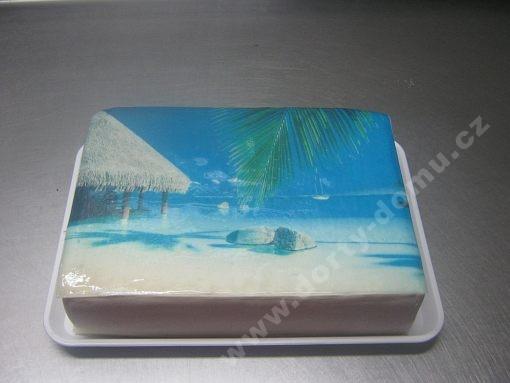 dort-plaz-s-jedlou-fotografii.jpg