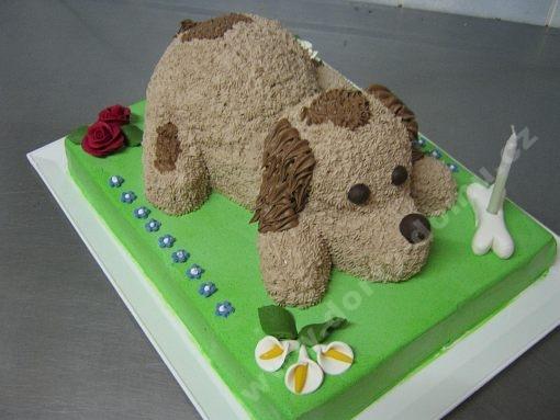 dort-zvirata-pejsek-na-trave.jpg