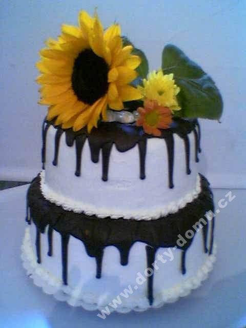 sl17-dort-dvoupatrovy-se-slunecnici.jpg