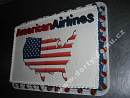 fi61-dort-american-airlines.jpg