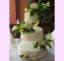 svpl20-svatebni-dort-s-kvety-a-dekorem-listku.jpg