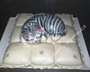 zvz81-dort-kotatko-v-marcipanu-na-polstarku.jpg